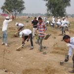 50 Million Trees Planted by India in One Day – World Record