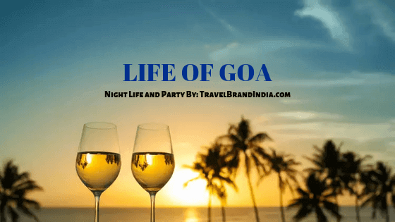 Life of Goa - Party and Nightlife Image with bear glass photos