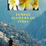 Amazing and Most Beautiful Temple Flowers of India