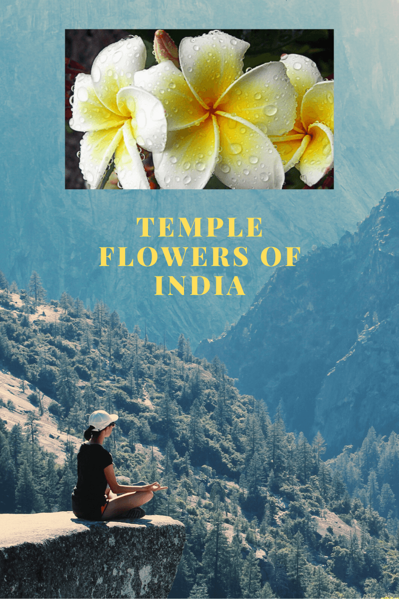 Temple Flowers of India